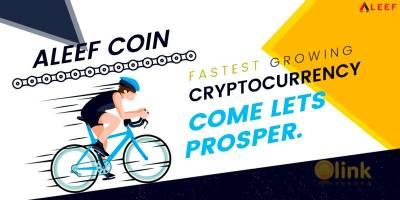 Aleef Coin