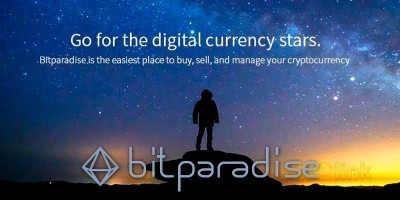 ICO BITPARADISE image in the ICO list