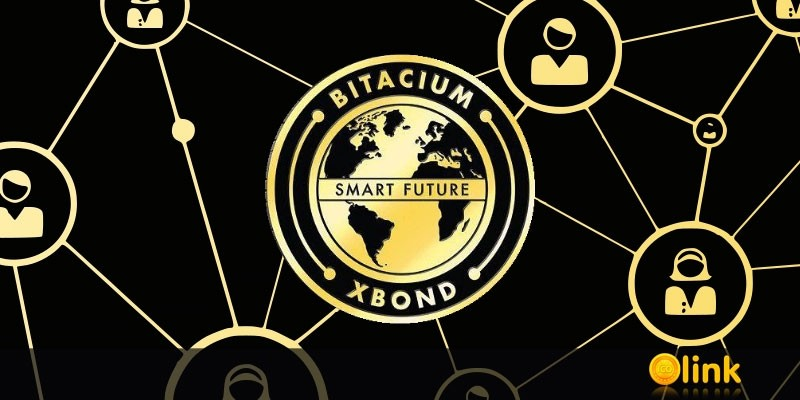 PRESS-RELEASE-Bitacium-prepares-for-the-most-Incredible-launch