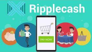 ICO «RIPPLECASH» Video