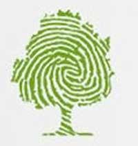 logo-Amazonians-Green-Coin